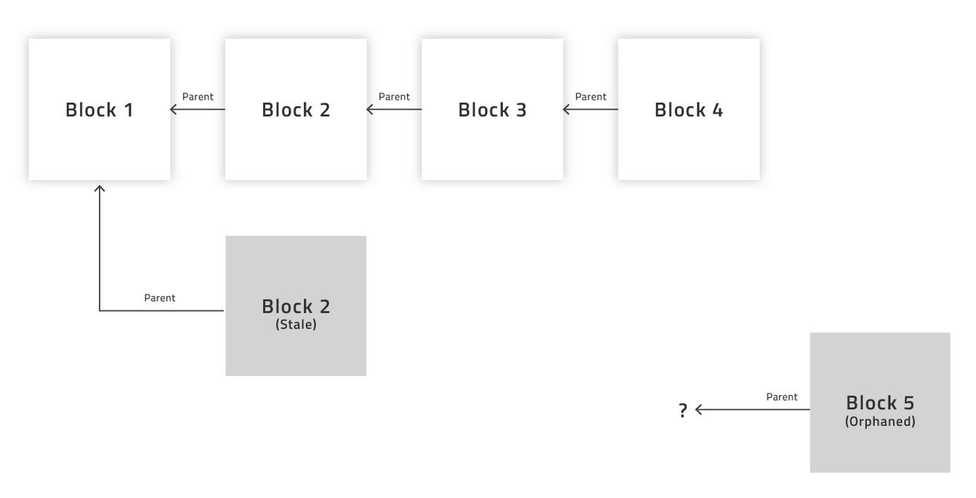 Что такое брошенные блоки в Биткоине и анкл-блоки в сети Эфириум