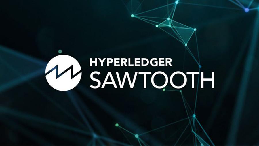 Hyperledger: что это такое и какое значение имеет для блокчейна